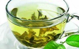 Защита от рака и борьба с морщинами — польза зеленого чая