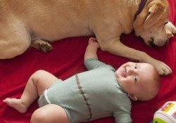 Наука — детям: о мокром памперсе сообщит диагностический «человечек»