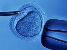 Организм женщины способен регенерироваться после ударов