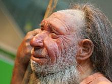 Исследование доказало: предки человека страдали раком