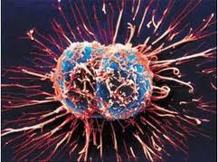 Неутешительная статистика раковых заболеваний