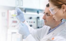 Случайное открытие: раковые клетки не могут выжить в условиях гипоксии