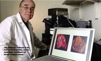 Во время метастазов в организме раковые клетки действительно меняются