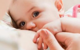 Как правильно кормить своего малыша грудью