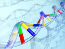 Генетические мутации защищают от диабета, несмотря на факторы риска