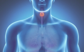 Щитовидка: причины и диагностикa заболеваний