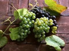 Чем полезен виноград для беременных