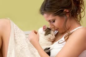 Кошки и беременность: о чем должна помнить будущая мама