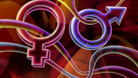 Resultado de imagem para simbolo masculino e feminino