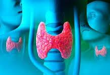 Eisai опубликовала результаты КИ препарата для лечения рака щитовидной железы