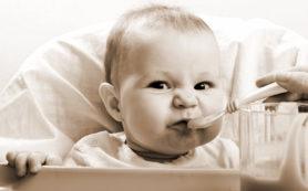 Первая личная посуда малыша: критерии выбора