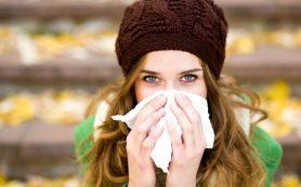 Можно ли начихать на аллергию?