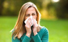 Как отличить аллергию от простуды: несколько верных признаков
