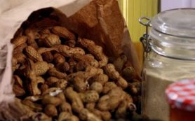 Новый анализ крови поможет вовремя выявить аллергию на арахис
