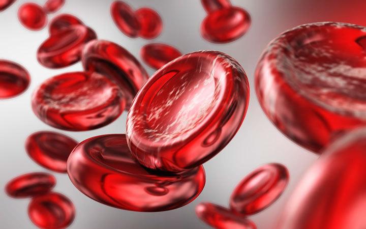Гемоглобин и продукты, с помощью которых можно его повысить