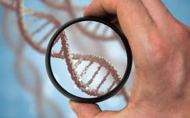 100% тест ДНК в Харькове в лаборатории «Медикал геномикс»