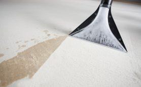 Химчистка ковров: когда требуется, чем выполняется и куда обратиться в Киеве?