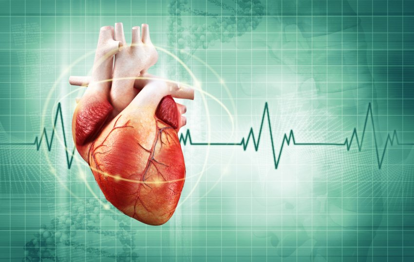 Аритмия: факторы риска, противопоказания и профилактика