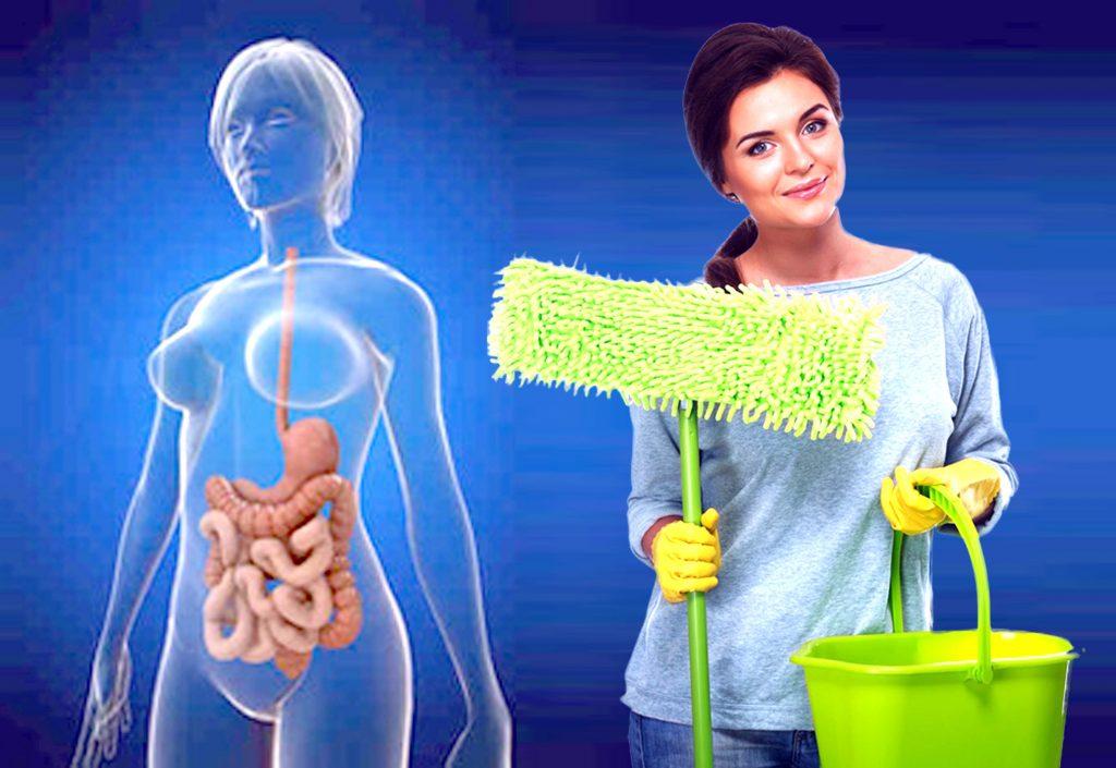Интенсивная очистка организма — миф или реальность?
