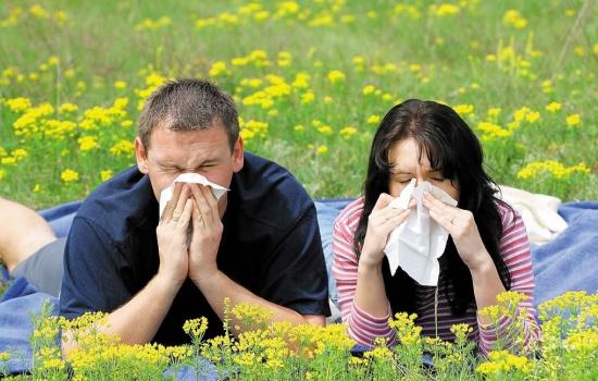 Почему женщины страдают от аллергии гораздо чаще и сильнее, чем мужчины?