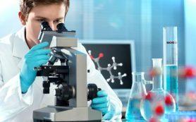 Генеалогический ДНК-тест на национальность: особенности, как проводится, где получить услугу?