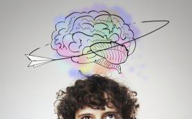 Источник молодости мозга найден в гиппокампе
