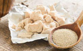 Какие виды дрожжей применяются в кулинарии? Как правильно хранить дрожжи