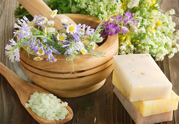 Полезные для кожи растения