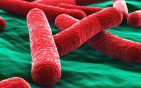 В России начали эксперимент по редактированию генома