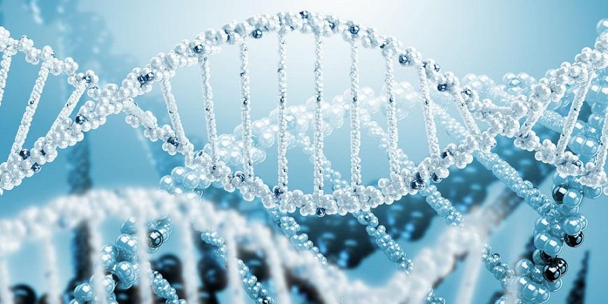 Генетическая консультация