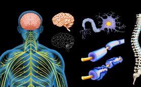 Что такое рассеянный склероз, каковы его причины и как его распознать?