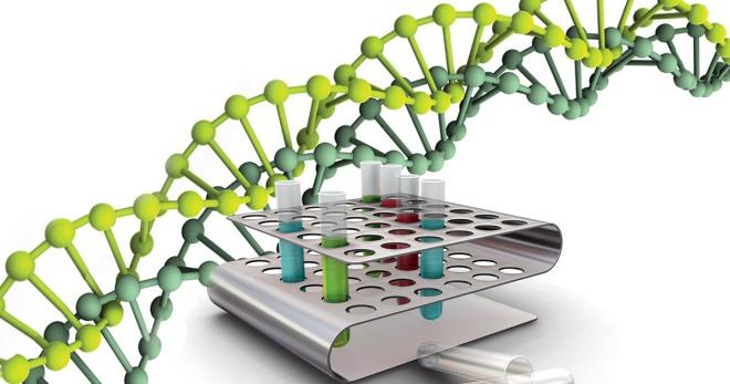 ПЦР-диагностика – что выявляет анализ и как его проводят?