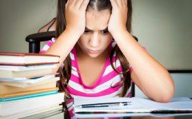 Много или мало: сколько должны писать дети и взрослые?