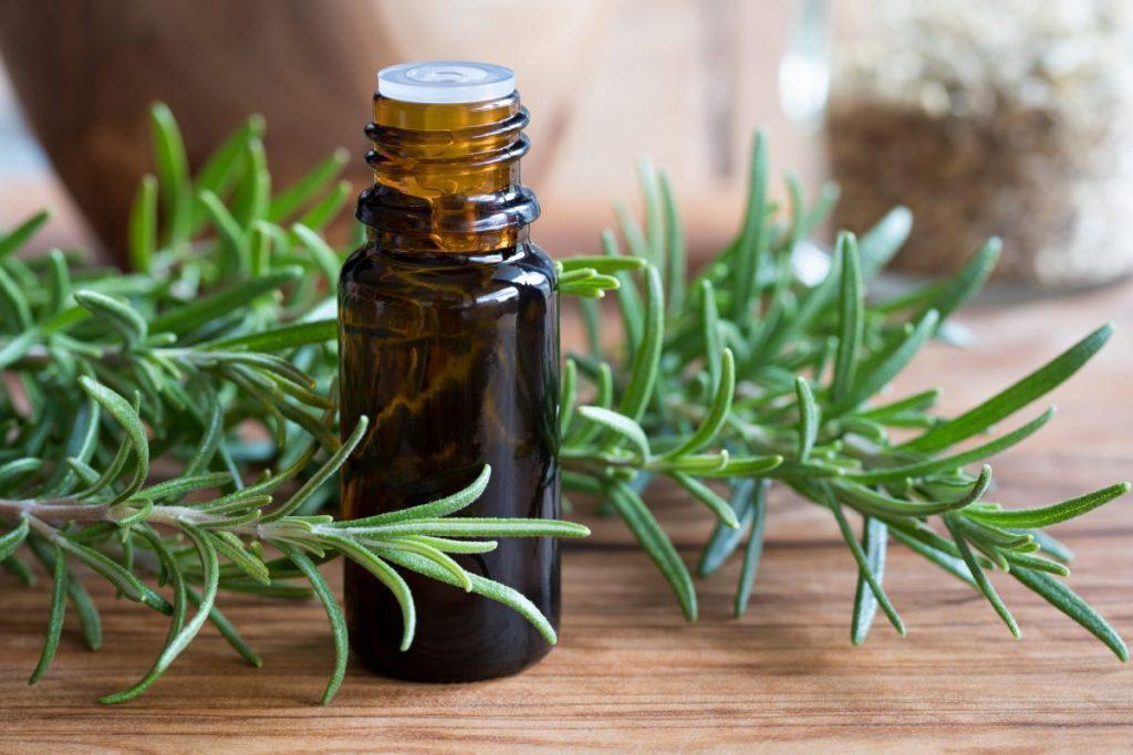 Может ли запах розмарина сделать вас умнее?