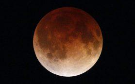 Менструальные и лунные циклы: есть ли связь?