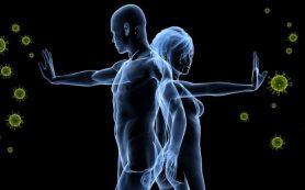 Влияние БАД на иммунитет