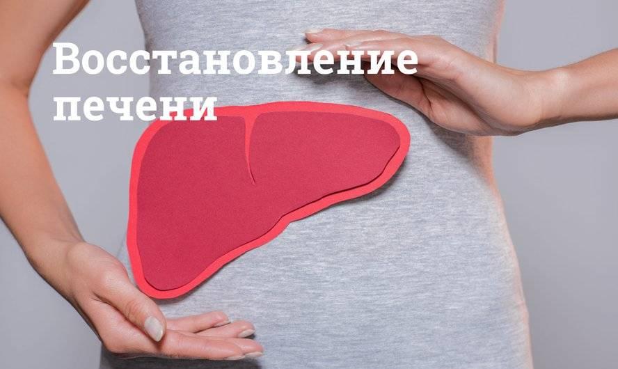 Регенерация печени без лекарств