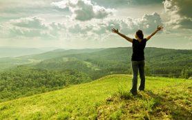 Как начать здоровый образ жизни?