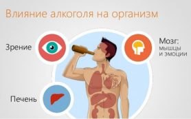Влияние алкоголя на печень и желудок