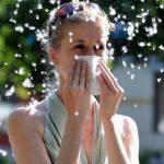 Аллергия на тополиный пух: симптомы и признаки
