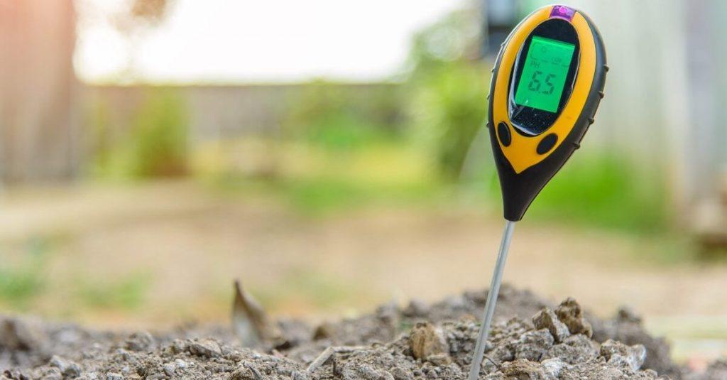 Кислотность почвы и ее значение